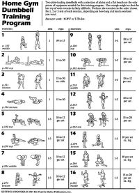Weight Bench Workouts Charts