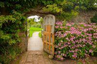 1000+ ideas about Backyard Retreat on Pinterest | Garden ...