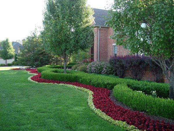 formal garden with ornamental grass