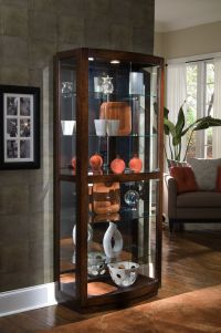 158 best images about Curio Cabinets on Pinterest ...