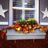 17 Best images about Fall & Winter Window Boxes on ...