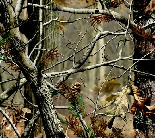 Muddy Girl Cell Phone Wallpaper Amazing Camo Nature Pinterest More Camo Ideas