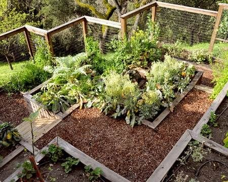 8 Best Images About Vegetable Gardens On A Slope On Pinterest