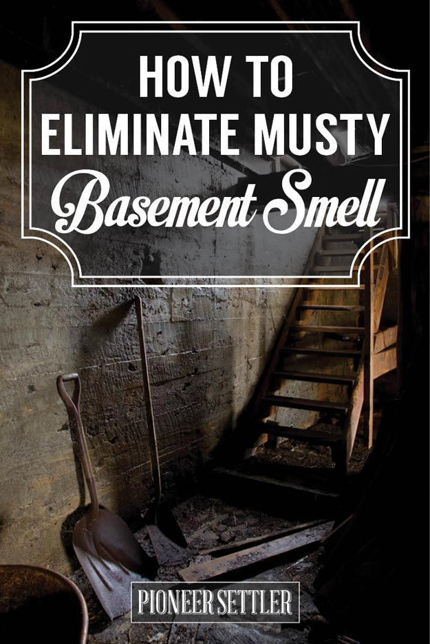 Eliminate Musty Smell In Basement  Home, Diy Home