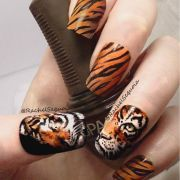 ideas tiger nails