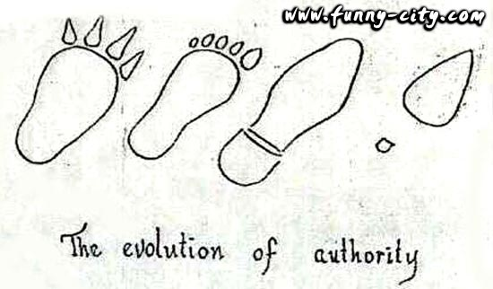 17 Best images about Evolutionary Stroll on Pinterest