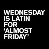 Image result for hump day image