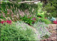 landscaping on a hillside steep slope   Terraces prevent ...