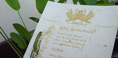 Wedding Invitations Sri Lanka Google Search A Sri