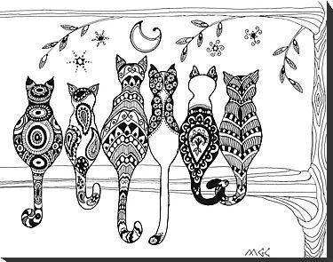 Gatos on Pinterest