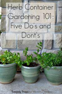 25+ best ideas about Patio Herb Gardens on Pinterest ...