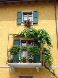 62 best images about DIY Balcony & Trellis on Pinterest ...