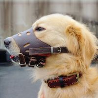 296 best images about Dog - Collars, Harnesses & Leashes ...