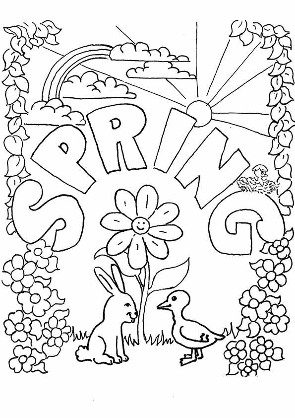 221 Best Adult Coloring Pages Images
