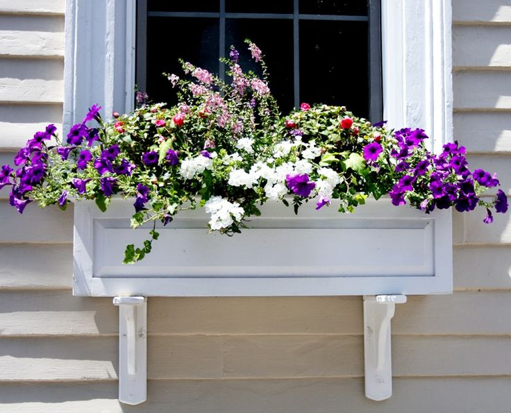 17 Best images about Curb Appeal Ideas and Tips on
