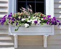 17 Best images about Curb Appeal Ideas and Tips on ...