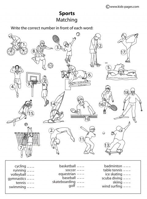 79 best images about PE Worksheets on Pinterest