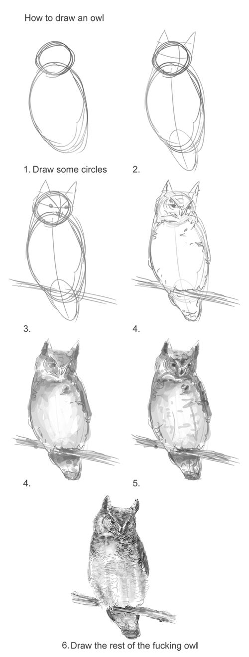 Best 20+ Draw an owl ideas on Pinterest
