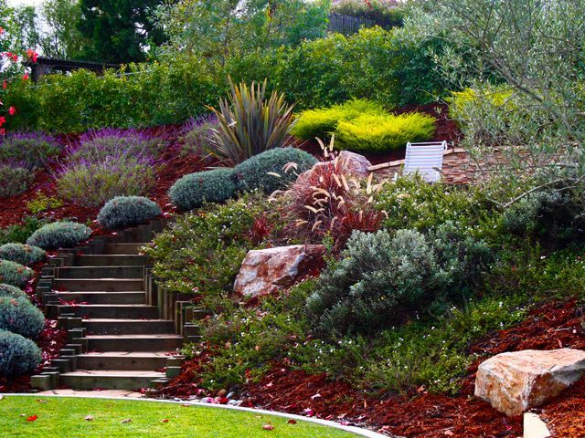 25 Best Ideas About Hill Garden On Pinterest Sloped Yard