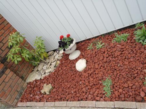 Vigoro 0.5 cu. ft. Decorative Stone Red Lava Rock