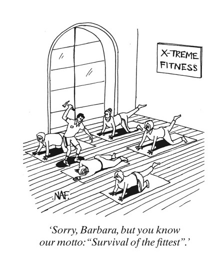 1000+ images about Fitness funnies on Pinterest