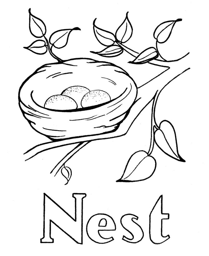 17+ best images about Robin's Nest Yoga on Pinterest