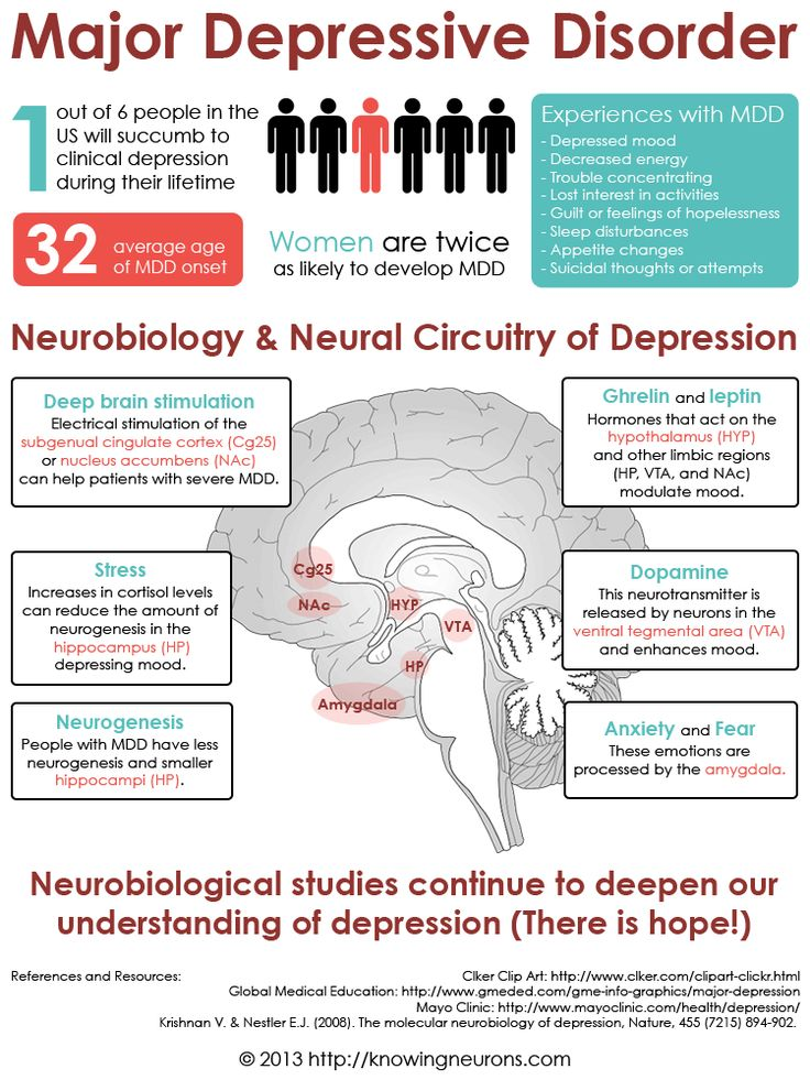 the anatomy of anxiety diagram visio wiring stencil this infographic explores neurological basis major depressive disorder. | infographics ...