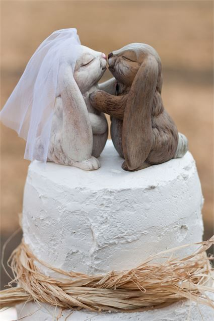 25 Best Ideas About Rabbit Wedding On Pinterest Pastel
