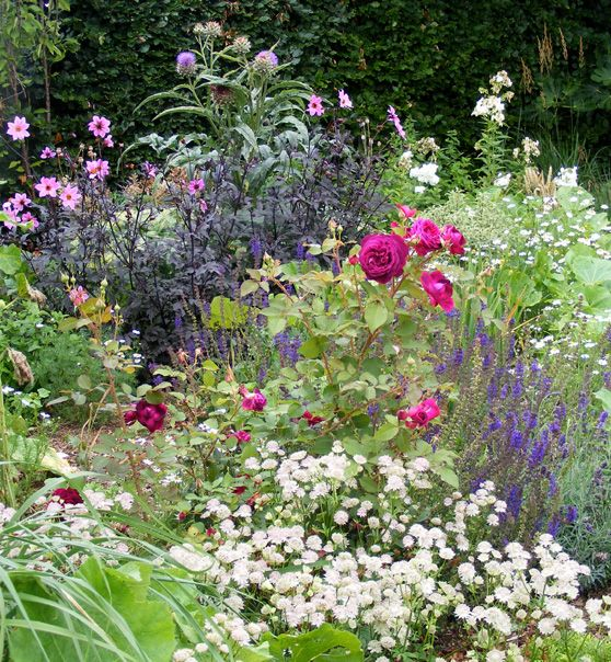 698 Best Images About Cottage Garden On Pinterest Gardens