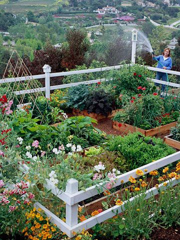 61 Best Images About Small Garden Fence Ideas On Pinterest