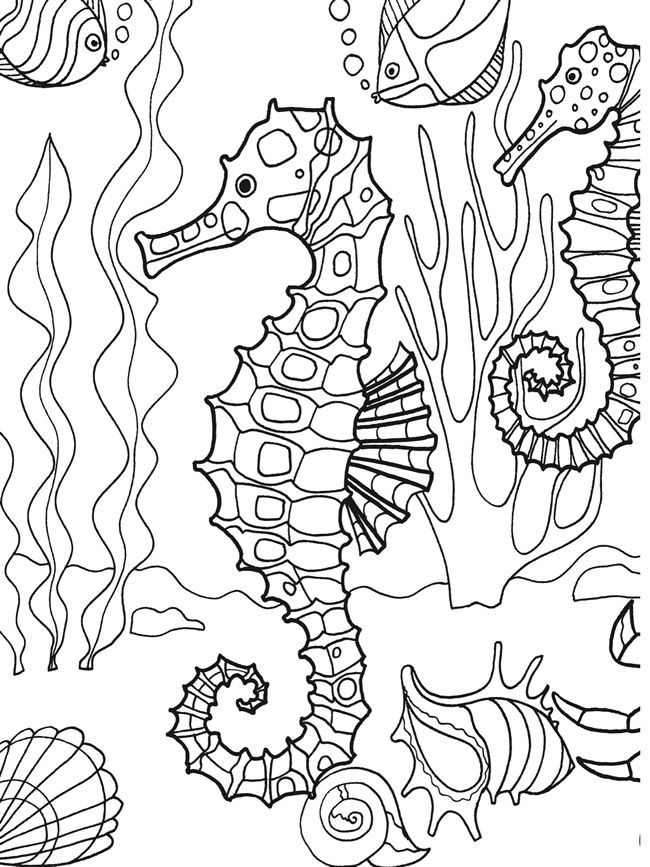Dover Publications sample page from Under the Sea