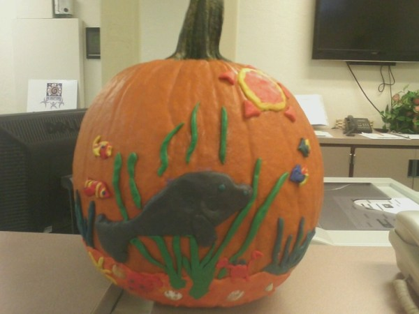 17 Best images about Pumpkin Decorating on Pinterest