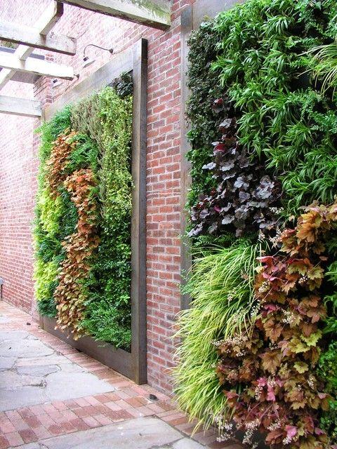 25 Best Ideas About Wall Gardens On Pinterest Succulent Wall