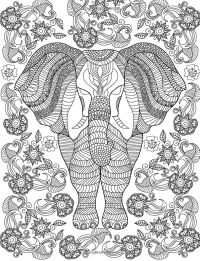 19 best images about Adult coloring: Elephants on ...