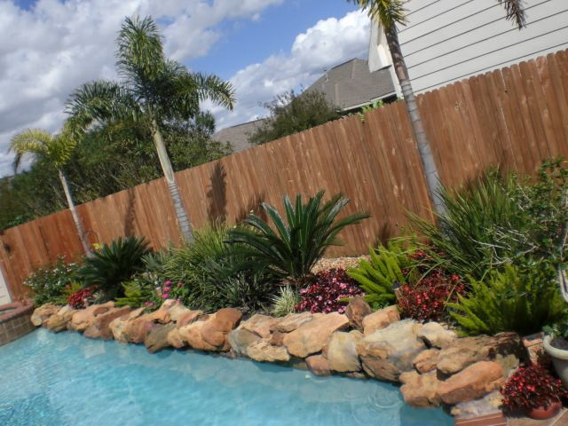25 Best Ideas About Tropical Pool Landscaping On Pinterest