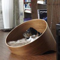 164 best images about Modern Dog Ideas on Pinterest | Pet ...