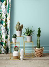 1000+ ideas about Cactus Decor on Pinterest | Cactus ...