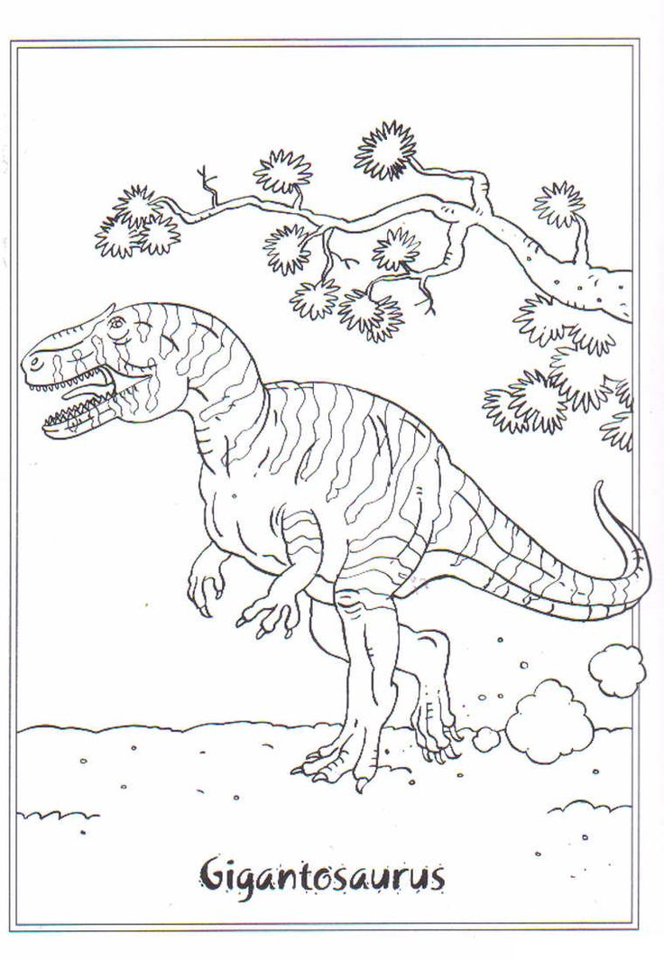 809 best images about Thema : Dino's on Pinterest