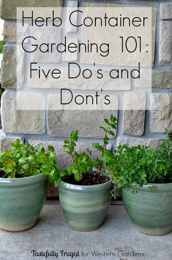 25 Best Ideas About Herb Garden Planter On Pinterest Herb