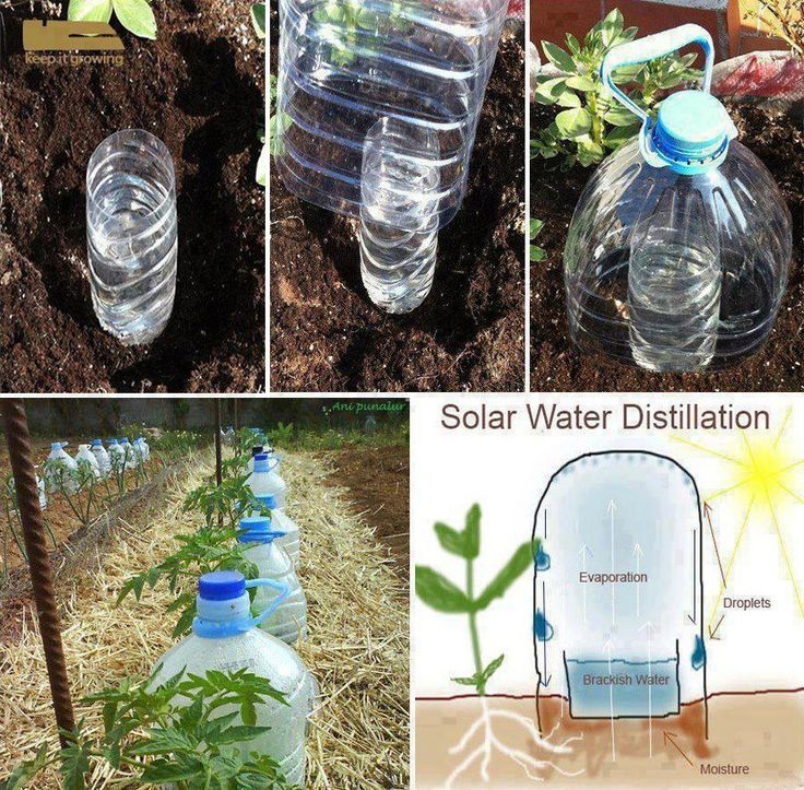 25 Best Ideas About Diy Irrigation System On Pinterest Drip