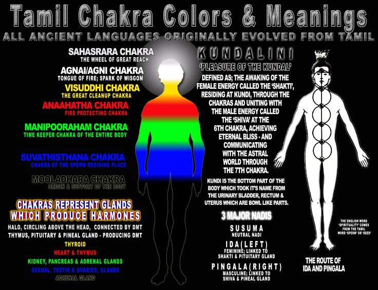 84 best images about Tamil Chakras on Pinterest   White ...