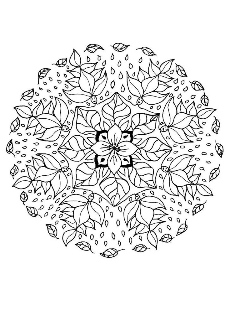 17 Best images about Adult (advanced) colouring in on