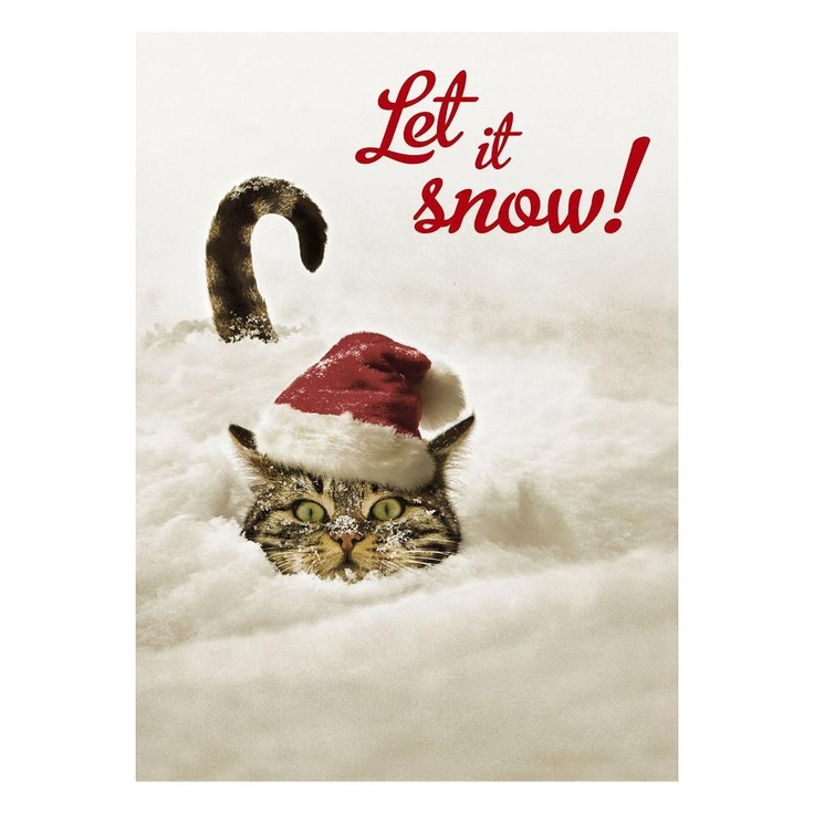 321 Best Images About Snow Cats On Pinterest Snowflakes
