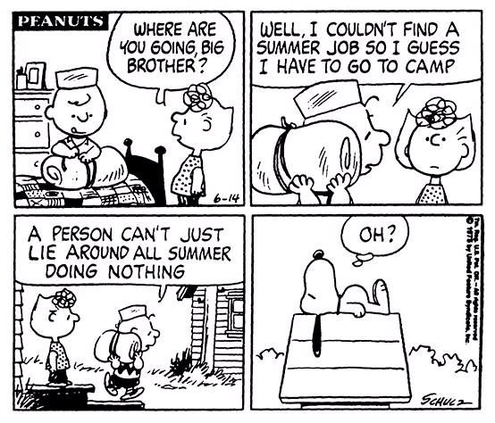 17 Best images about Peanuts Comics on Pinterest