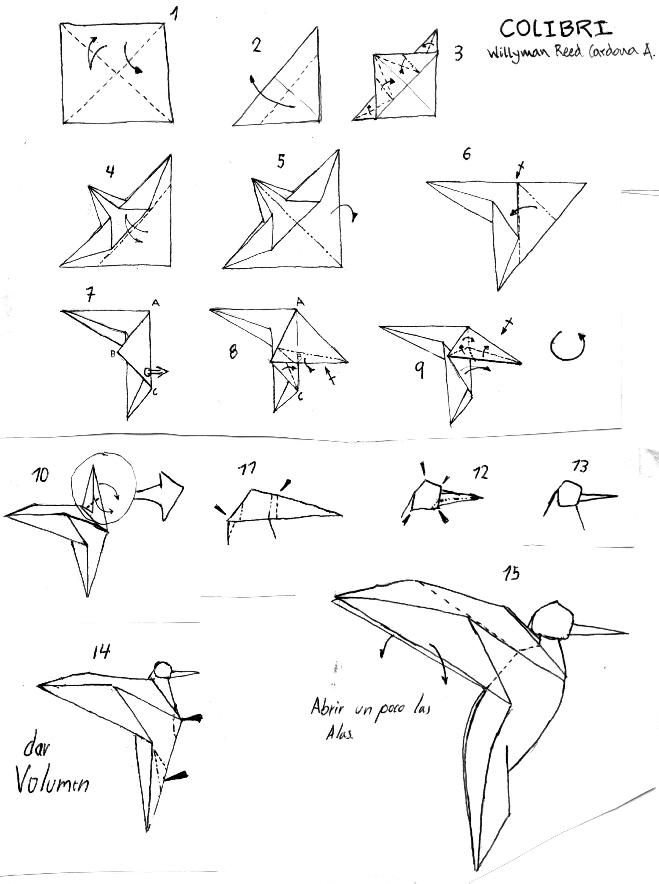 Origami Diagram Humming Bird