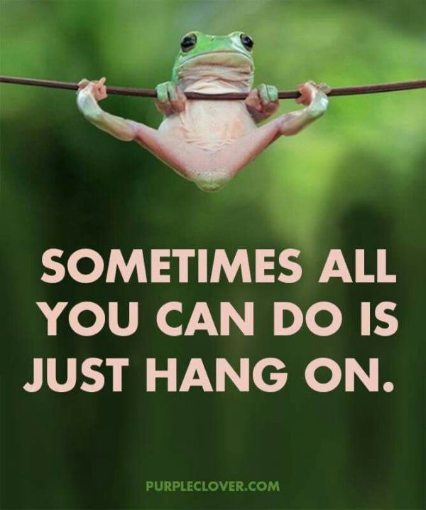 25 best ideas about Hang In There on Pinterest Drawing