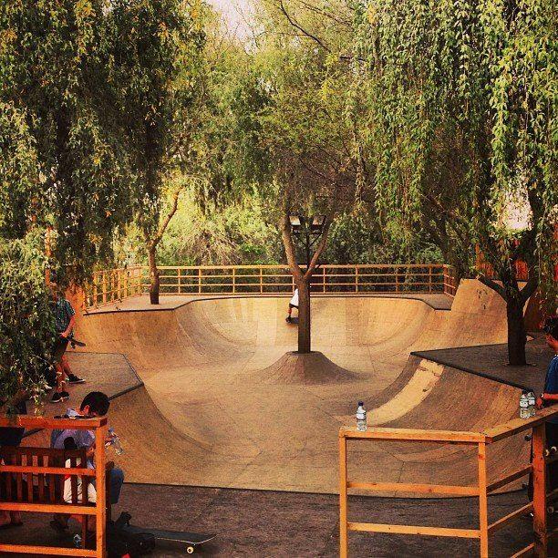 backyard skatepark