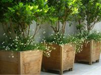 17+ best ideas about Large Outdoor Planters on Pinterest ...