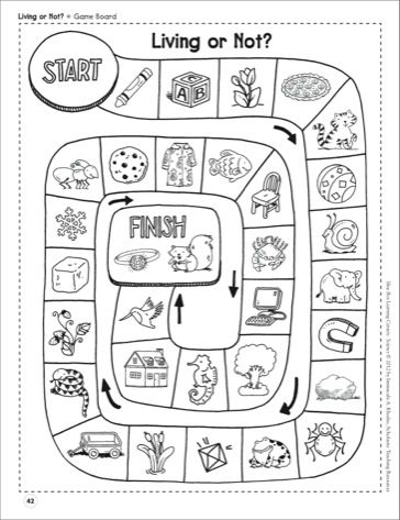 1000+ ideas about Living And Nonliving Things on Pinterest