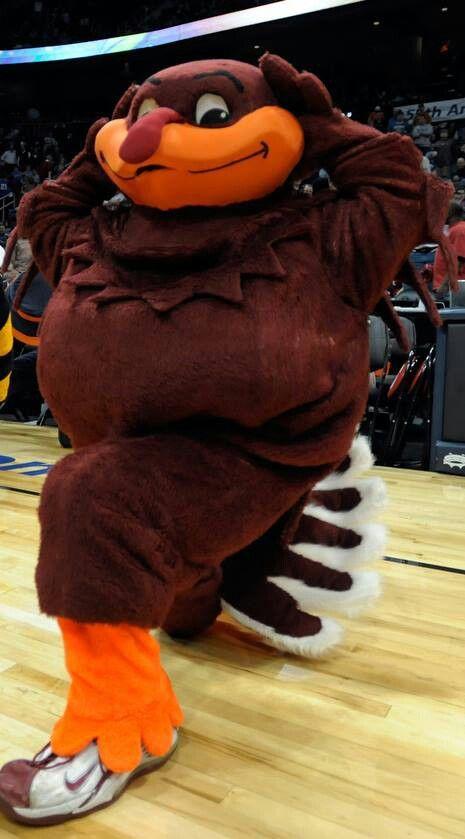127 Best Images About Hokiebird On Pinterest Virginia